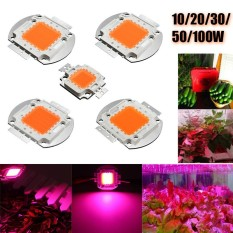 Bán 10X10 Wat 9 12 V 1050Ma Suốt Cao Cấp Led Chip Phat Triển Quốc Tế Not Specified Rẻ