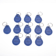 125KHZ ID RFID Access Read Only Card Token Key Chain Fobs Security Tag - intl
