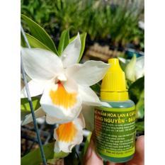 Hình ảnh (hỗ trợ phí VC) 2 chai chế phẩm hoa lan và cây cảnh HÙNG NGUYỄN- ĐÀ LẠT