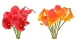 Bán 20 Cai Nhan Tạo Calla Lily Hoa Centerpieces Phụ Kiện Trang Tri Hoa Giả 10 Cai Cam 10 Cai Đỏ Quốc Tế Unbranded Người Bán Sỉ