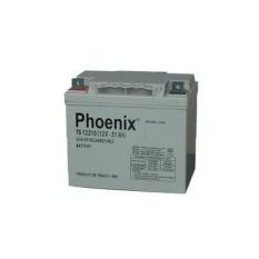 Ắc Quy Phoenix Kín Khí CN 12V-31Ah (TS12310)