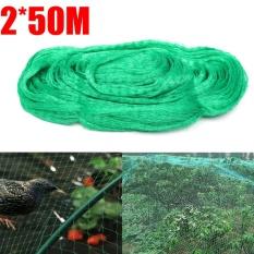 Anti Bird Netting 2x50m Allotment Crop Plant Protection Net 15mm Diamond Mesh Green - intl