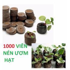 Giá Bán Bộ 1000 Vien Nen Ươm Hạt Xơ Dừa Oem Nguyên