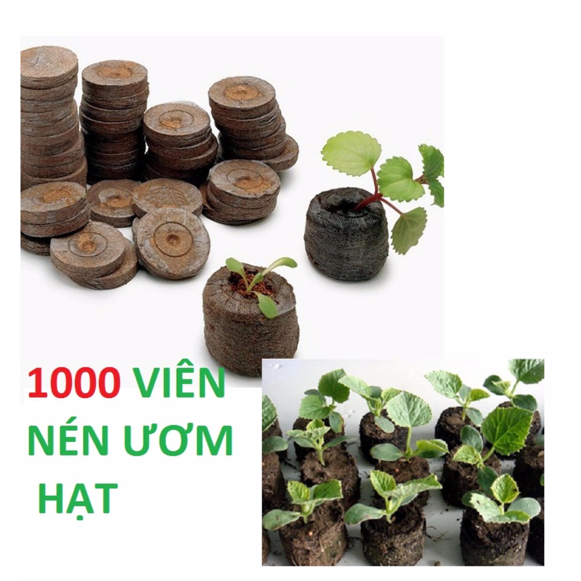 Bộ 1000 Viên Nén Ươm Hạt Xơ Dừa