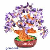 Mua Cay Tai Lộc Đa Thạch Anh Tim Tự Nhien Gemstone Bank Rẻ