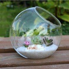 Trong suốt Vòng Bình Thủy Tinh Chai Terrarium Thủy Canh Hộp Đựng Nồi Hoa Ngôi Nhà MÔ Bàn Trang Trí Lễ Cưới 15 cm-quốc tế