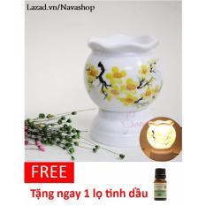 Combo 1 đèn xông TlNH DẦU  + 1 lọ tinh dầu 10ml (tặng ngay 1 bóng đèn dự phòng) - Navashop