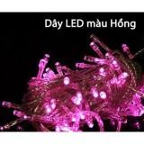 Dây Đèn LED Hồng 5 Mét