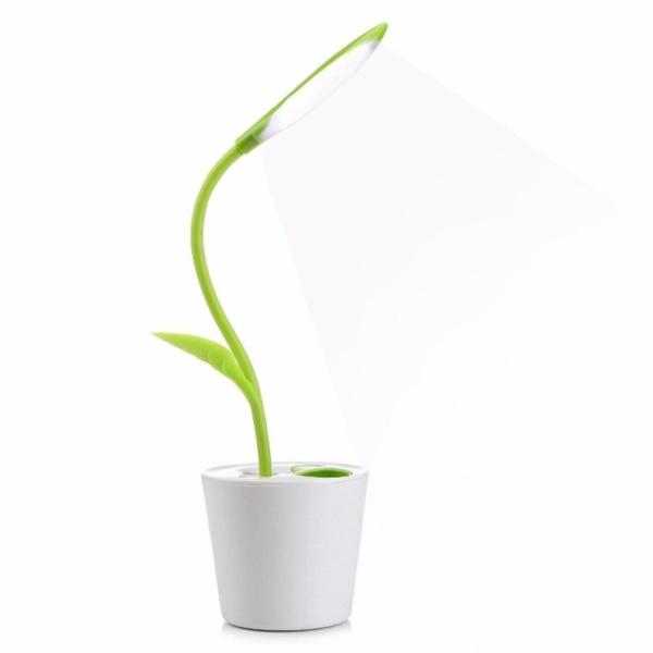 Bảng giá đèn bàn LED không hại mắt đèn tích điện đèn ngủ đèn trang trí hình cây xanh
