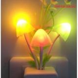 Đèn ngủ hình nấm cảm ứng ánh sáng đổi màu procare - Bitcoinpay