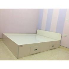 giường nhựa cao cấp g1