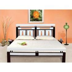 Giường sắt kiểu gỗ hộp 48 – DT01