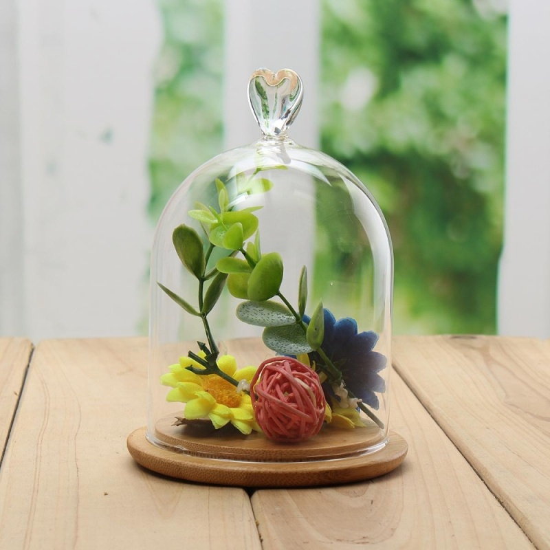 Glass Display Cloche Bell Jar Dome Flower Immortal Preservation With Wooden Base - intl