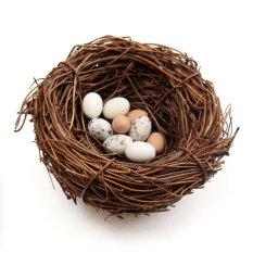 Bán Vong Tay Day Leo Trứng Nau Tổ Chim Yến Nha Thien Nhien Thủ Cong Ngay Lễ Trang Tri 3 Quả Trứng Size 60 Met Đường Kinh Trong Quốc Tế Trực Tuyến Trong Vietnam