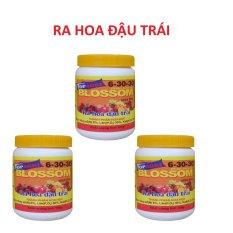 Cửa Hàng Họp 3 Hủ Phan Bón Kích Thích Ra Hoa Cho Phong Lan Blossom 6 30 30 Khong Chứa Ure 100G Trong Hồ Chí Minh