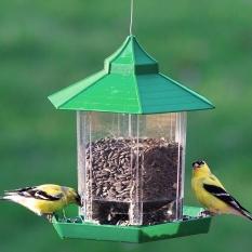 Kobwa Toàn Cảnh Vọng Lâu Phong Cách Thức Ăn Chim Hoang Dã Ăn Cho Sân Vườn Bên Ngoài-quốc tế