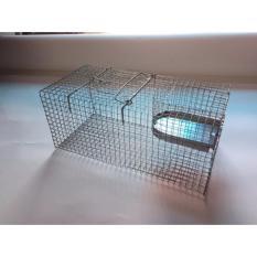 Hình ảnh Lồng bẫy chuột bằng thép