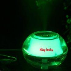 May Phun Sương Tạo Ẩm Kiem Đen Ngủ King Lucky Ta890 Xanh La Cay Hà Nội Chiết Khấu