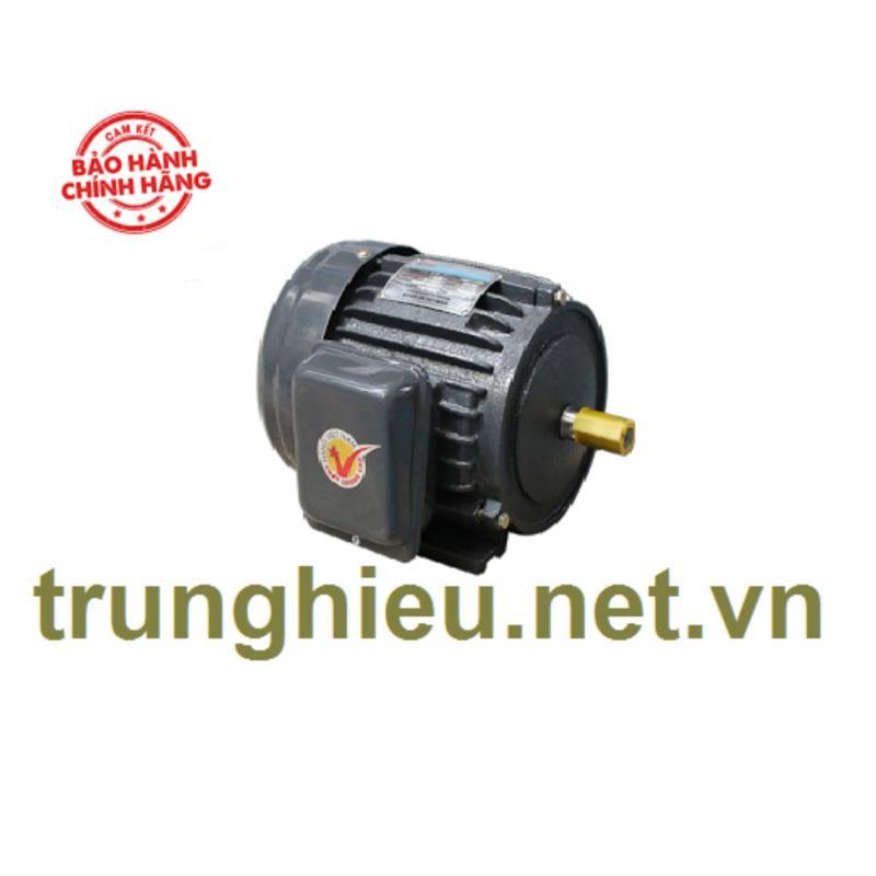 Motor vỏ gang chân đế Hồng Ký - JET 1.5KW