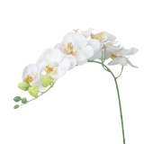 Simulation Butterfly Orchid Artificial Flower Plant Home Decoration White Intl Oem Chiết Khấu 50