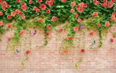 Tranh Dan Tường 3D Vtc Tường Hoa Hồng Lunawall 0162 Hồ Chí Minh Chiết Khấu 50