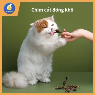 MADDIE Thức ăn cho mèo đông khô 100% thịt nguyên chất 5 vị cút vịt gà cá lòng đỏ trứng gà nhỏ, thức ăn dinh dưỡng cho mèo, thức ăn cho thú cưng LI0251 thumbnail