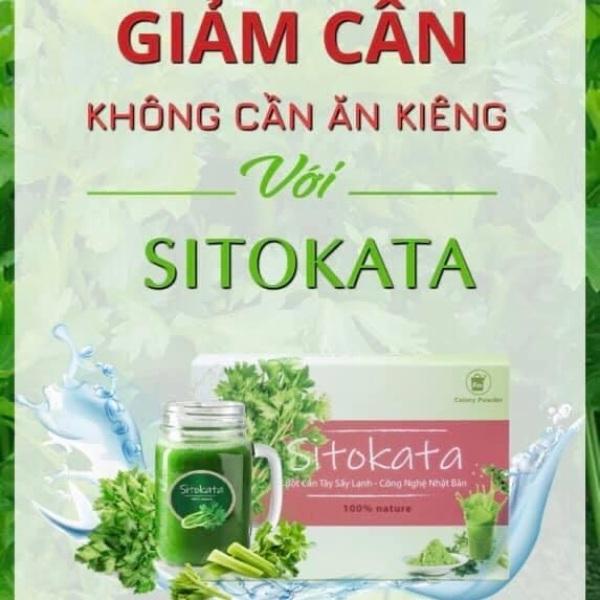 Cần tây sấy lạnh Sitokata 1 hộp 20 gói (100gr) tặng chai nước + cẩm nang giá rẻ
