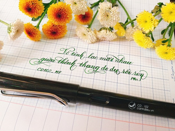 Mua 🎀 Bút luyện chữ đẹp Cánh Diều CD102