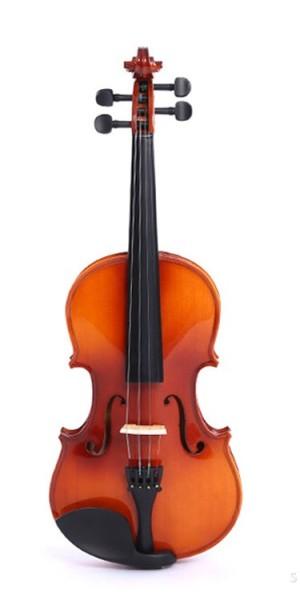 violin vĩ cầm
