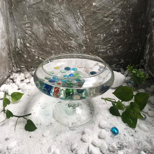 Bể cá để bàn -Bể Cá thủy Tinh Hồ Cá Mini Chậu Cây Có Chân - DC01