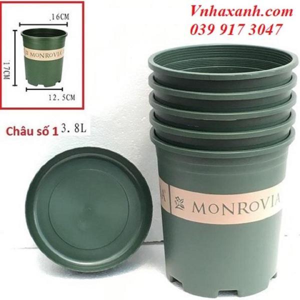 set 10 Chậu Nhựa Trồng Cây Cao Cấp Monrovia Số 1