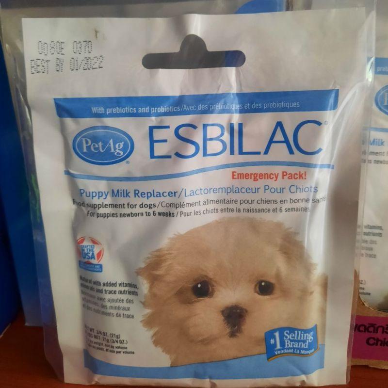 Sữa Esbilac Powder sữa thay thế cho chó con
