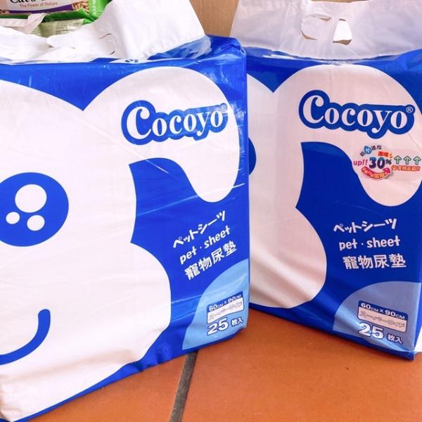 60*90cm tả lót Cocoyo Nhật Bản.