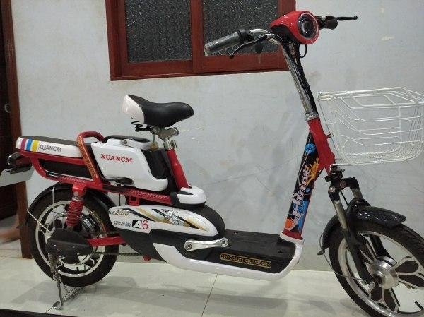 Mua Xe đạp điện A6
