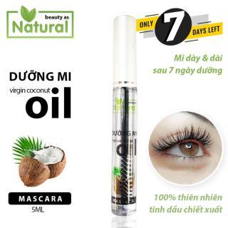 Mascara Dầu Dừa Dưỡng Mi 7 ngày siêu tốc 100% chiết xuất tinh dầu dừa có mùi thơm ngọt dừa thumbnail