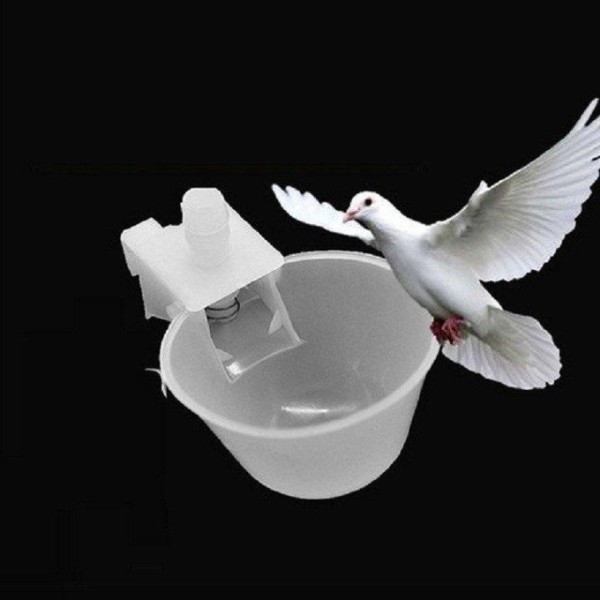 Máng uống nước cho chim bồ câu - phụ kiện uống nước cho chim bồ câu - bồ câu tín nghĩa