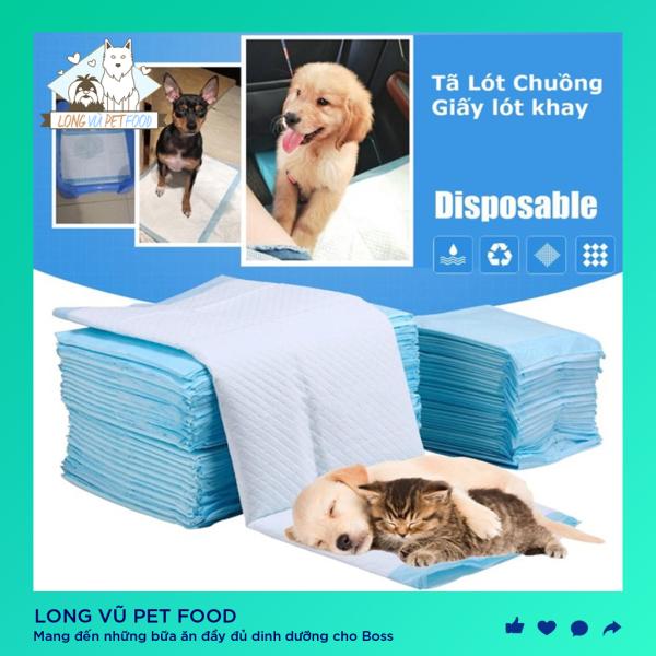 Tấm lót thấm hút nước tiểu, ổ đẻ cho chó mèo con. Tấm lót vệ sinh cho thú cưng PAD PET TRAINNING