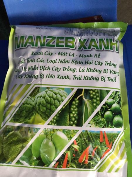 Xanh cây mát lá mạnh rễ Manzeb Xanh gói 1kg