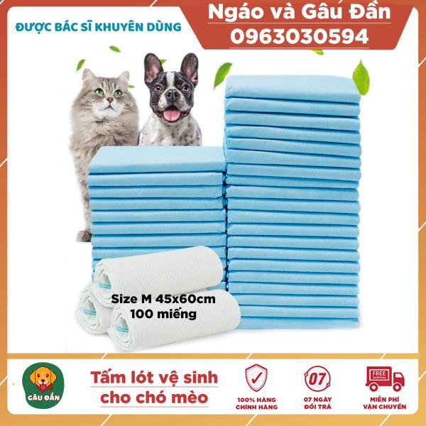 Tấm lót vệ sinh Pad Pet Training cho chó mèo size M 50 miếng 45x60cm