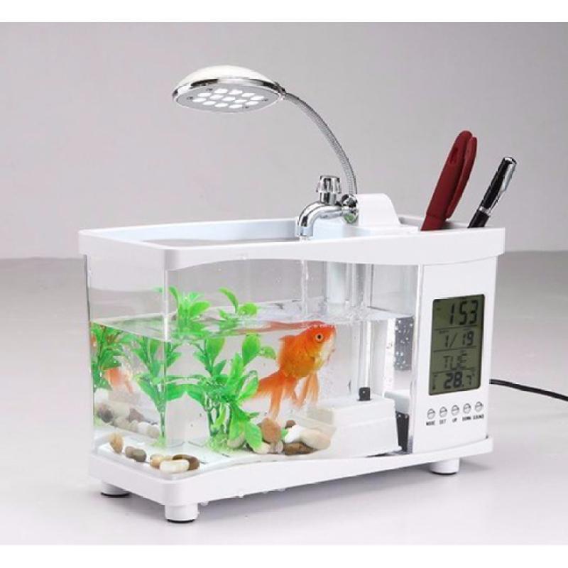 Bể cá mini để bàn - đa chức năng, hệ thống lọc nước cung cấp oxi, đo nhiệt độ, đèn chiếu sáng
