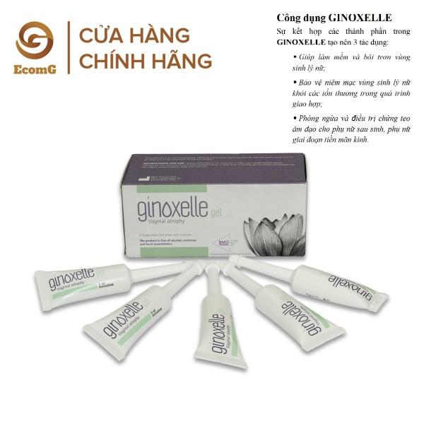 Hộp 5 Gel thụt bôi trơn Ginoxelle 5ml - Bảo vệ và bôi trơn cô bé , ngừa vi khuẩn, viêm nhiễm - Đẩy lùi chứng teo â.m đa.o - Bí quyết cho tình yêu thăng hoa - GINO003 nhập khẩu