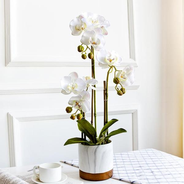 Handfeel Moisturizing Imitation Flowers Butterfly Orchid Set Marble Potted Plant Artificial Flowers Corsage Living Room Northern Europe Asian Creative Luxury Art Works Floral
