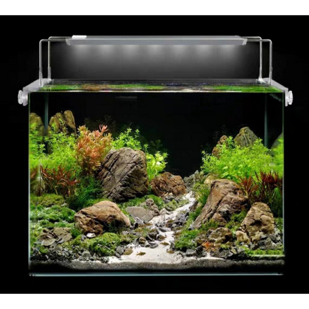 Đèn thủy sinh Aqua Blue bể 60cm đến 1m- Đèn aquablue chuyên dụng cho cây thủy sinh ánh sáng 10000k