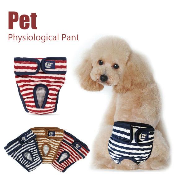 ZEEBR Có thể giặt được Bông Tóm tắt Tã lót Dog Pant Ngắn thú cưng Đồ lót sinh lý Tã kinh nguyệt