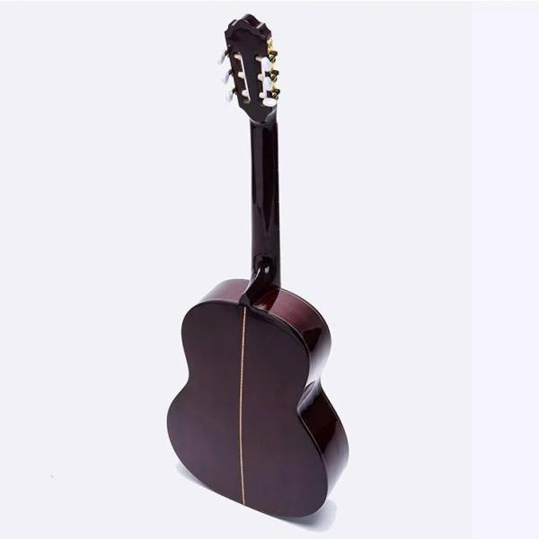 Đàn Guitar classic C170