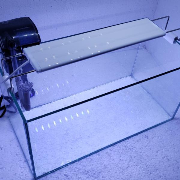Bể cá mini có lọc đèn