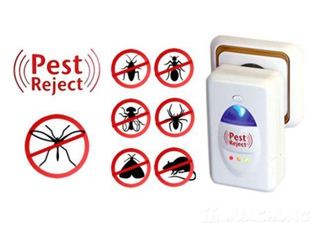 Máy đuổi gián, muỗi, chuột, ruồi bằng sóng siêu âm an toàn, dễ sử dụng Pest Reject, may duoi gian, muoi, chuot, ruoi bang song sieu am an toan, de su dung