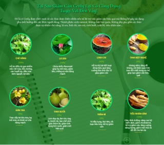 Trà Thảo mộc giảm cân , giảm béo CENL Y chính hãng loại 15 viên thường -cam kết hiệu quả 7