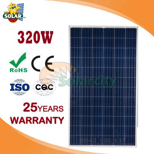 Pin năng lượng mặt trời 320w poly