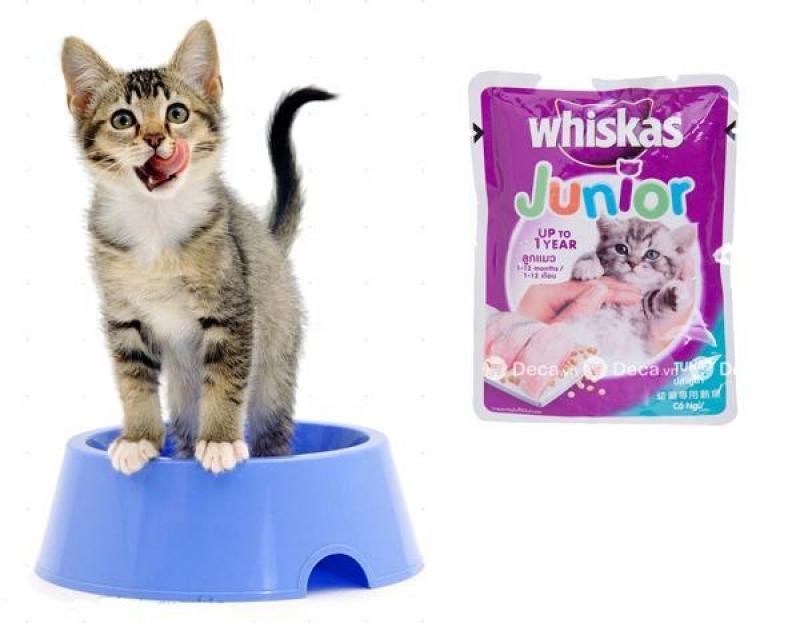 Combo 6 hoặc 12 gói pate Whiskas Junior cho mèo con 85gr